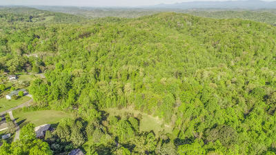 Powell Residential Lots & Land For Sale: 1303 Newman Rd