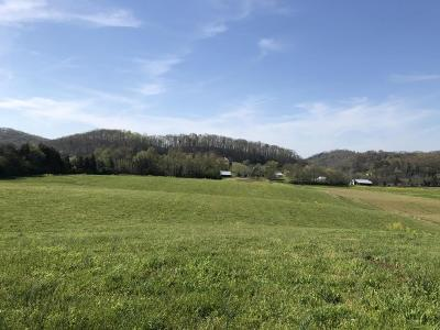 Residential Lots & Land For Sale: Mountain View Rd