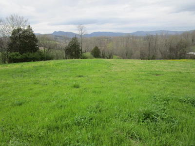 Blaine Residential Lots & Land For Sale: Indian Ridge Rd
