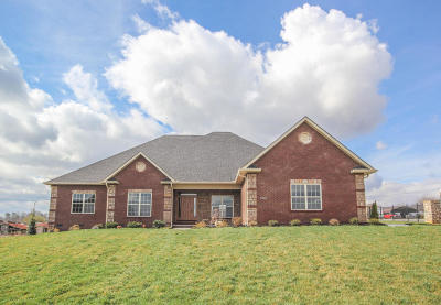 Maryville Single Family Home For Sale: 3401 Old Plantation Way