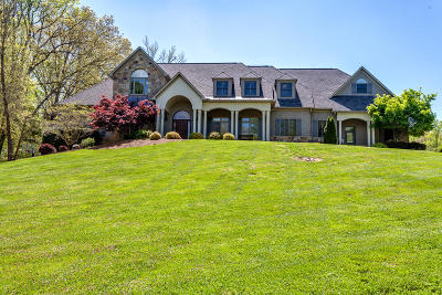 Anderson County Single Family Home For Sale: 101 Stonebridge Way