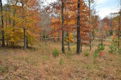 Anderson County, Campbell County, Claiborne County, Grainger County, Union County Residential Lots & Land For Sale: Fox Ridge Lane