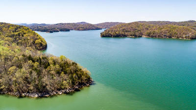 Anderson County, Campbell County, Claiborne County, Grainger County, Union County Residential Lots & Land For Sale: Lot 119 Hickory Pointe Lane