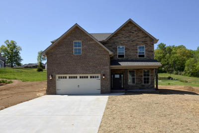 Knoxville Single Family Home For Sale: 718 Lampwick Lane