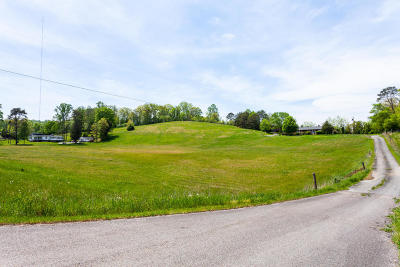 Blaine Residential Lots & Land For Sale: 485 Rutledge Pike