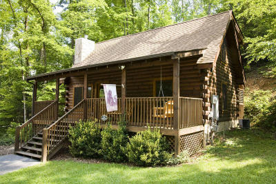 Pigeon Forge Single Family Home For Sale: 811 Kittyhawk Way