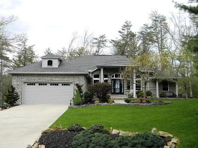 Fairfield Glade Single Family Home For Sale: 202 Forest View Drive