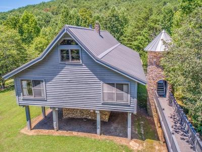 Blount County Single Family Home For Sale: 4820 Allegheny Cove Way