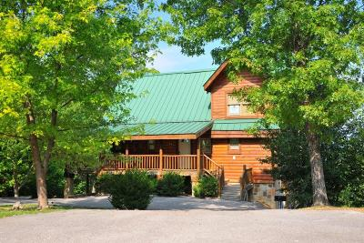 Sevierville Single Family Home For Sale: 4475 Stackstone Rd