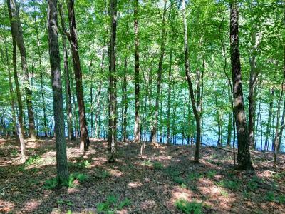 Anderson County, Campbell County, Claiborne County, Grainger County, Union County Residential Lots & Land For Sale: Deer Run Point