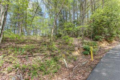 Gatlinburg Residential Lots & Land For Sale: Lot 42 Ownby Drive
