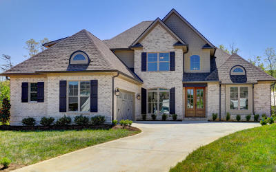 Knox County Single Family Home For Sale: 12335 Swan Falls Way