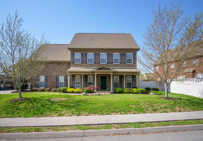 Knoxville Single Family Home For Sale: 4507 Ivy Rose Drive