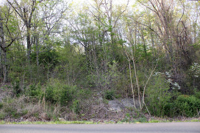 Fairfield Glade Residential Lots & Land For Sale: 317 Snead Drive