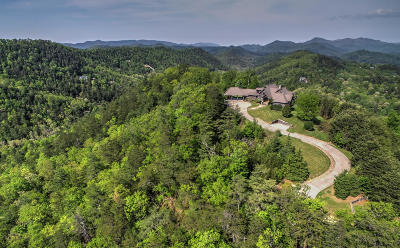 Blount County Single Family Home For Sale: 775 Hawk View Drive
