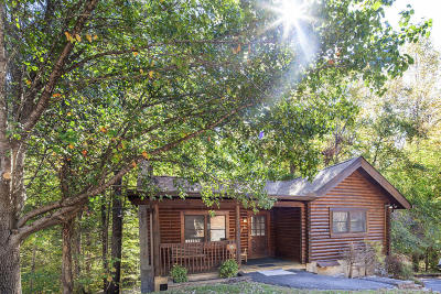 Pigeon Forge Single Family Home For Sale: 703 Osprey Way
