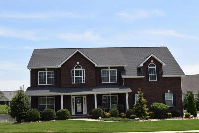 Knoxville Single Family Home For Sale: 6110 Wishing Well Lane
