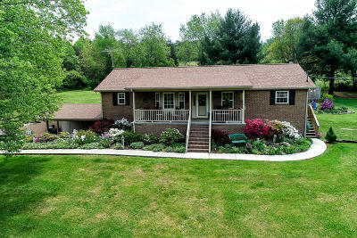 Heiskell Single Family Home For Sale: 2035 Hinds Creek Rd