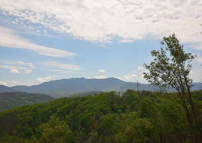 Gatlinburg Residential Lots & Land For Sale: 852 Village Loop Rd