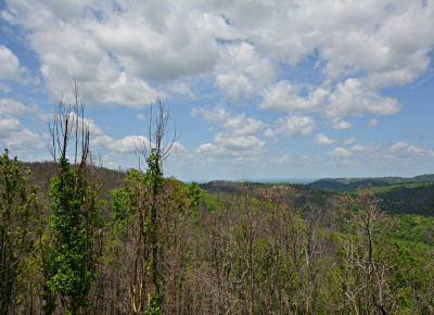 Gatlinburg Residential Lots & Land For Sale: 964 Village Loop Rd