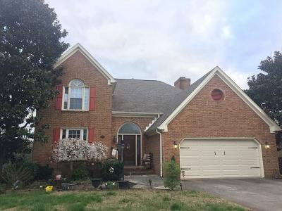 Knoxville Single Family Home For Sale: 3809 S View Circle