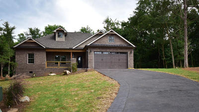 Loudon Single Family Home For Sale: 204 Inagehi