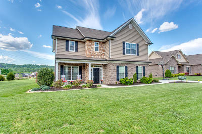 Knoxville Single Family Home For Sale: 723 Lampwick Lane