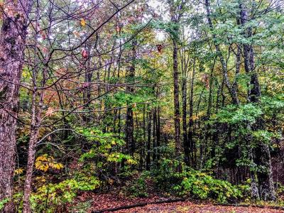 Gatlinburg Residential Lots & Land For Sale: Multiple Parcels Glades Rd