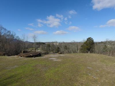 Pigeon Forge Commercial For Sale: 2230 Alpine Village Way