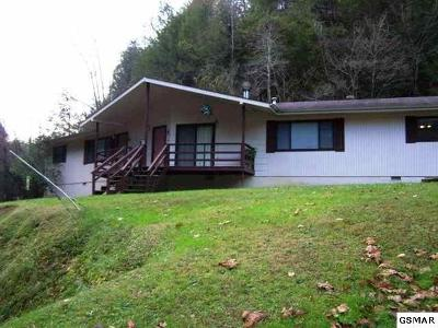 Gatlinburg Multi Family Home For Sale: 445-447 Dudley Creek Rd