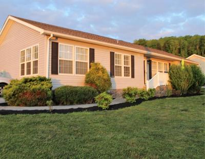 Dandridge Single Family Home For Sale: 1012 Milldale Square Rd
