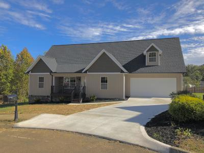 Corryton Single Family Home For Sale: 7401 Openview Lane