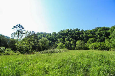 Maynardville Residential Lots & Land For Sale: Kettle Hollow