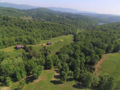 Residential Lots & Land For Sale: 809 Lynch Hollow Rd