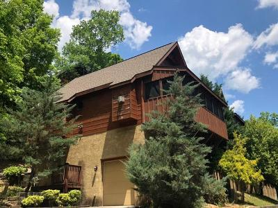 Pigeon Forge Single Family Home For Sale: 332 Greenwood Way