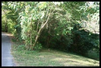 Lenoir City Residential Lots & Land For Sale: 151 Rogers Circle