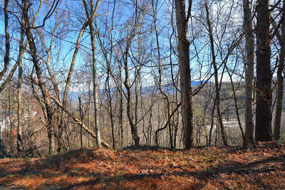 Gatlinburg Residential Lots & Land For Sale: Lot 6 Ski View Drive