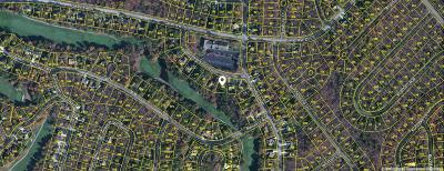 Fairfield Glade Residential Lots & Land For Sale: 118 Flossmoor Circle