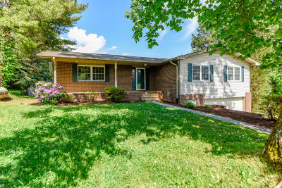 Maryville Single Family Home For Sale: 3501 Peppermint Hills Drive