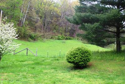 Lafollette Residential Lots & Land For Sale: 385 Chestnut Stump Rd
