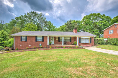 Clinton Single Family Home For Sale: 521 Woodland Drive