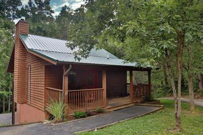 Gatlinburg Single Family Home For Sale: 533 Reba Lane