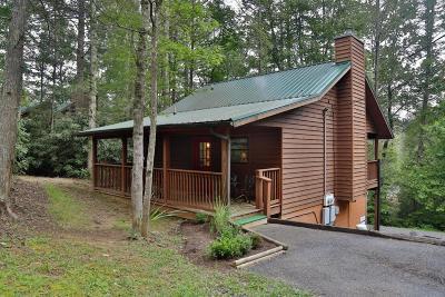 Gatlinburg Single Family Home For Sale: 531 Reba Lane