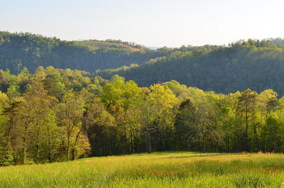 Tazewell Residential Lots & Land For Sale: 105 Acres Little Caney Valley Rd