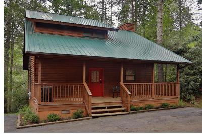 Gatlinburg Single Family Home For Sale: 529 Reba Lane