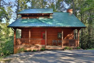 Gatlinburg Single Family Home For Sale: 527 Reba Lane