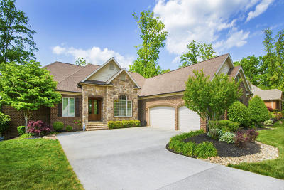 Lenoir City Single Family Home For Sale: 230 Windswept Drive