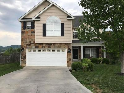 Knoxville Single Family Home For Sale: 2923 Timber Green Lane
