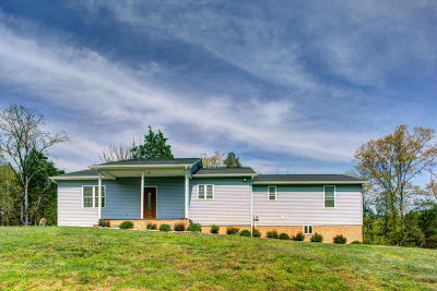 New Tazewell Single Family Home For Sale: 187 Straight Creek Dock Rd