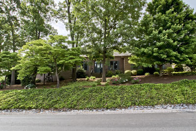 Loudon Single Family Home For Sale: 133 Tommotley Drive